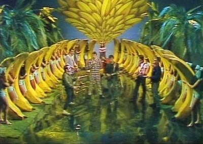 Bananas 12
